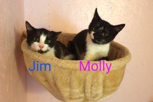 Jim_und_molly_026