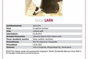lara-vermisst TASSO_Suchplakat_S2614375